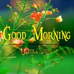 Flower Good Morning Wishes Wallpaper Download