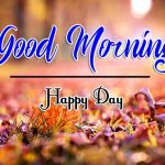 Flower Good Morning Wishes Pics Download