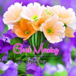 Free Latest Flower Good Morning Wishes Images Download