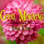 Flower Good Morning Wishes Pics Free Download