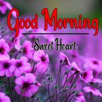 Flower Good Morning Wishes Wallpaper Free Download
