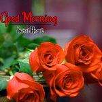 Rose Flower Good Morning Wishes Pics Images