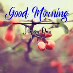 Flower Good Morning Wishes Wallpaper Download Free