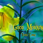 Best Flower Good Morning Wishes Pics Download