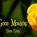 Beautiful Flower Good Morning Wishes Wallpaper Free