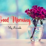 Beautiful Flower Good Morning Wishes Pics Free Download