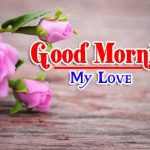 Flower Lover Good Morning Pics Free download