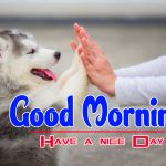 Free Puppy Lover Good Morning Download Images