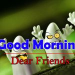Funny Good Morning Pictures HD