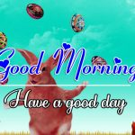All Good Morning Images Pics Wallpaper Free Download
