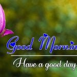 All Good Morning Images Wallpaper New Latest Download