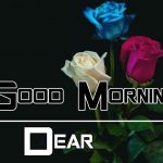 All Good Morning Images Pic Wallpaper