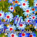 Best Top Free All Good Morning Images Pics Download