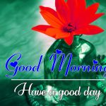 All Good Morning Images Pics Free Download