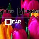 All Good Morning Images Wallpaper Pics Download