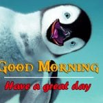 All Good Morning Images Photo for Facebook