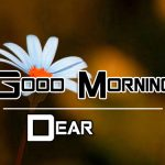 Best Free All Good Morning Images Pics Download