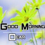 All Good Morning Images Pics Wallpaper New