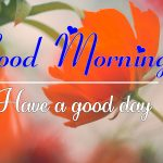 All Good Morning Images Pics Free for Whatsapp / Facebook