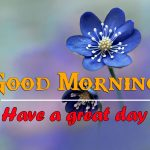 All Good Morning Images Pics Free Latest