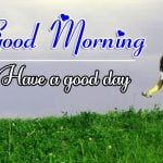 Top New Best All Good Morning Images Pics Download