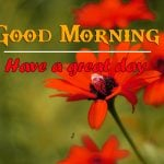 All Good Morning Images Photo Free new