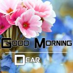 Good Morning Images Pics New Download