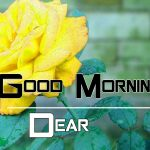 Top New Good Morning Images Pics Download