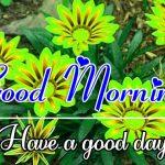 Good Morning Images Pics Wallpaper New Download