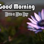 Good Morning Photo Images