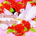 Friend Good Morning Images Pictures Download