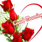 Friend Good Morning Images Pics Wallpaper With Red Rose