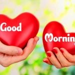 Love Couple Free Friend Good Morning Images Pics Download