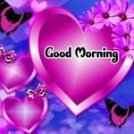 Best New Friend Good Morning Images Pics Download
