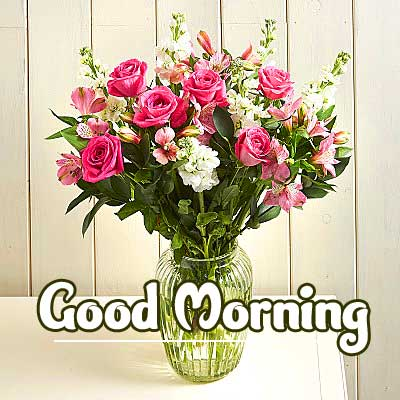 Latest Good Morning Images Pics photo With Flower
