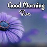 HD Latest Good Morning Photo