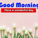 Hd Free Best Good Morning Wallpaper