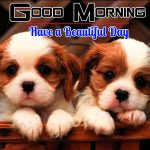 Hd Free Puppy Lover Good Morning Pics
