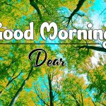 Latest Good Morning Pics