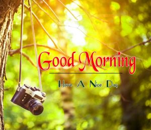 Nature Good Morning Pic Wallpaper Download