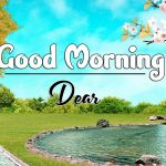 Nature Good Morning Photo Wallpaper