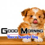 New Free Puppy Lover Good Morning Images
