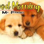 New Puppy Good Morning Photo Free