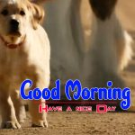 New Puppy Lover Good Morning Free Images