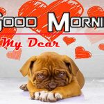 New Puppy Lover Good Morning Images
