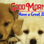 New Puppy Lover Good Morning Photo Images