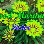 New Sister Good Morning Download Images