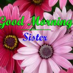 New Sister Good Morning Nice Images