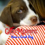 Puppy Good Morning Free Download Images
