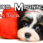 Puppy Good Morning Wallpaper